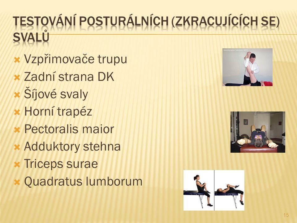 Testování posturálních (zkracujících se) svalů