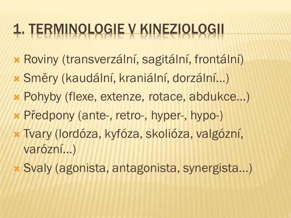 1. Terminologie v kineziologii