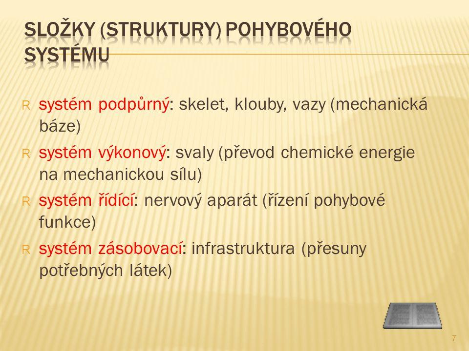 Složky (struktury) pohybového systému