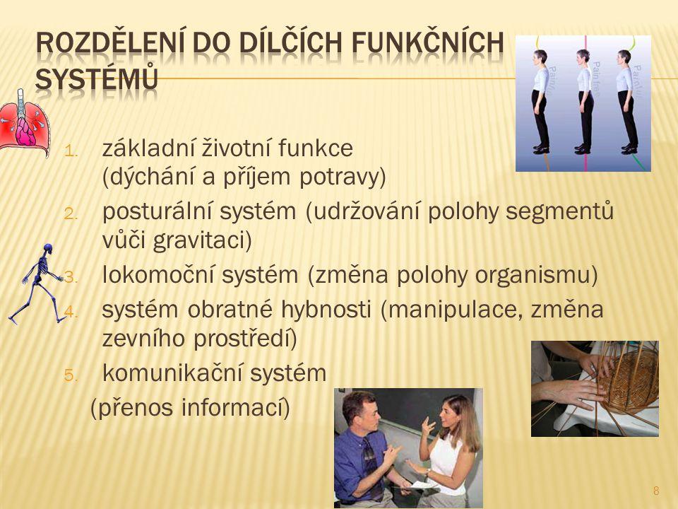 Rozdělení do dílčích funkčních systémů