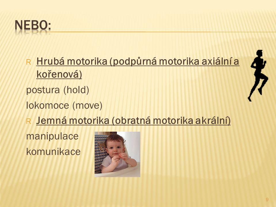 Nebo: Hrubá motorika (podpůrná motorika axiální a kořenová)