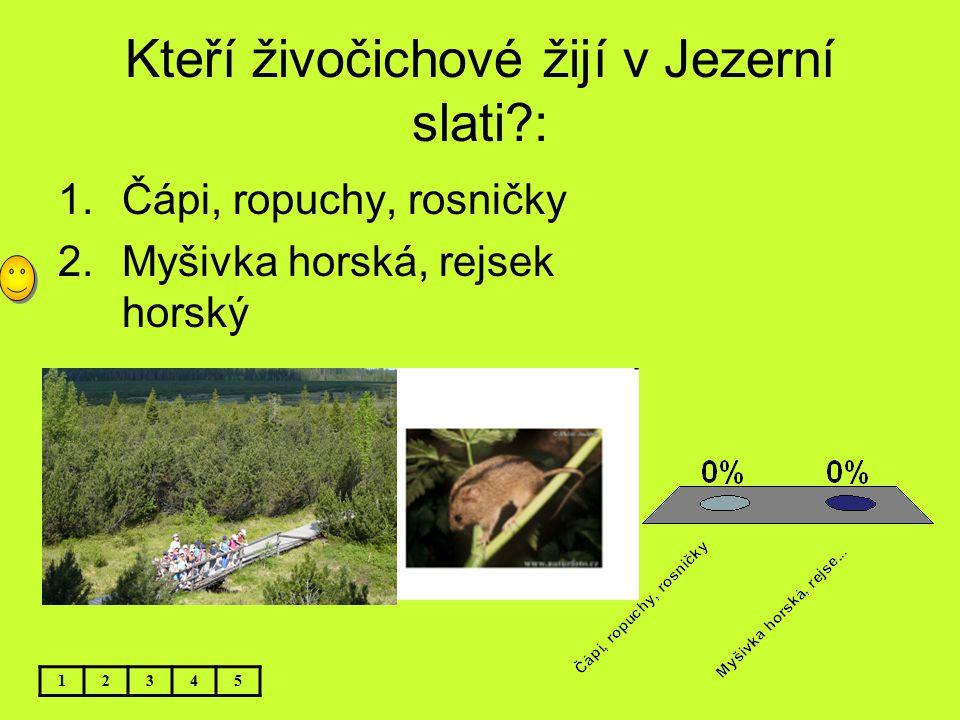 Kteří živočichové žijí v Jezerní slati :