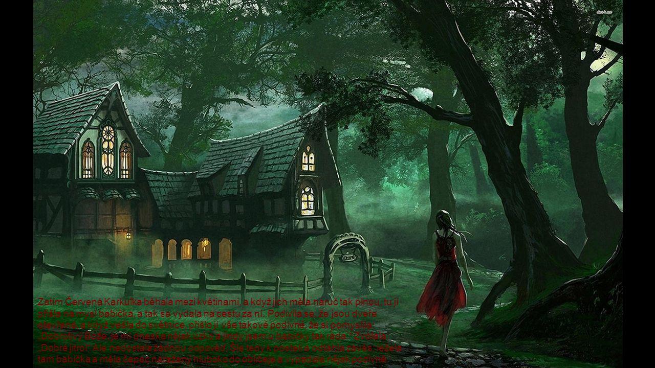 Zatím Červená Karkulka běhala mezi květinami, a když jich měla náruč tak plnou, tu jí přišla na mysl babička, a tak se vydala na cestu za ní.