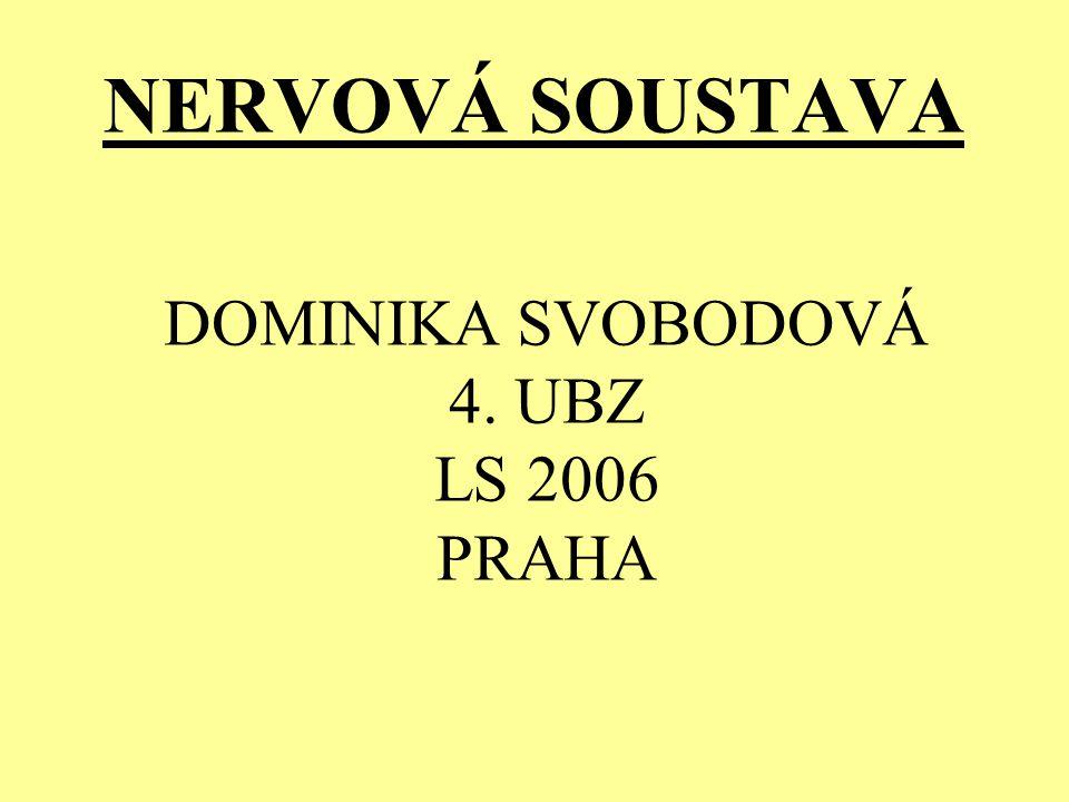 DOMINIKA SVOBODOVÁ 4. UBZ LS 2006 PRAHA