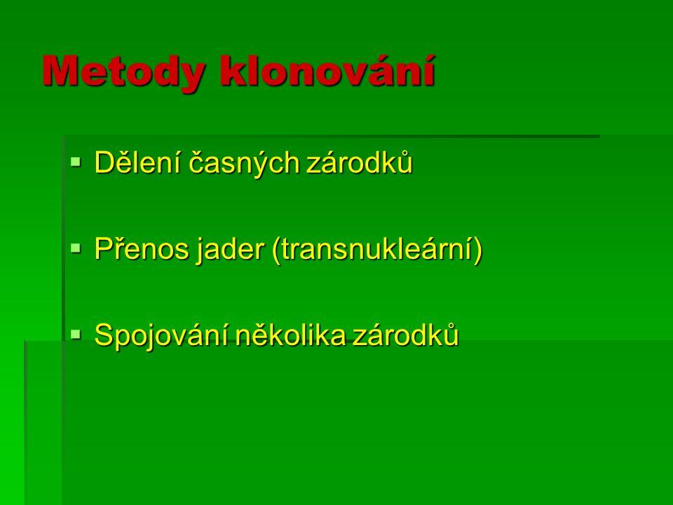 Metody klonování Dělení časných zárodků Přenos jader (transnukleární)