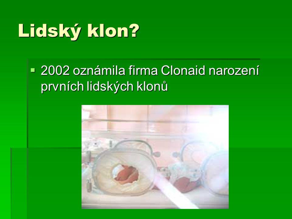 Lidský klon 2002 oznámila firma Clonaid narození prvních lidských klonů
