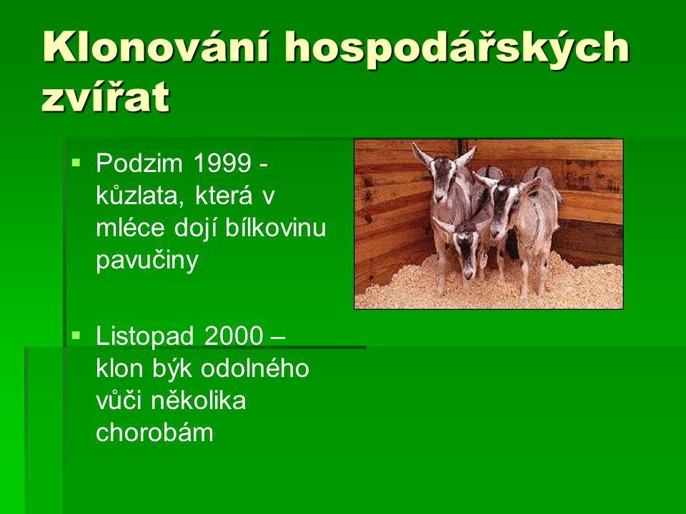 Klonování hospodářských zvířat