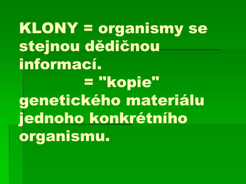KLONY = organismy se stejnou dědičnou informací