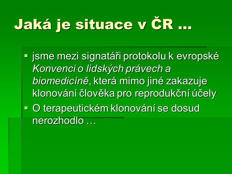 Jaká je situace v ČR …