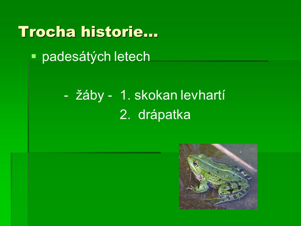 Trocha historie… padesátých letech - žáby - 1. skokan levhartí