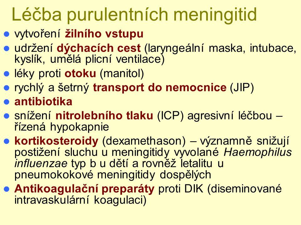 Léčba purulentních meningitid