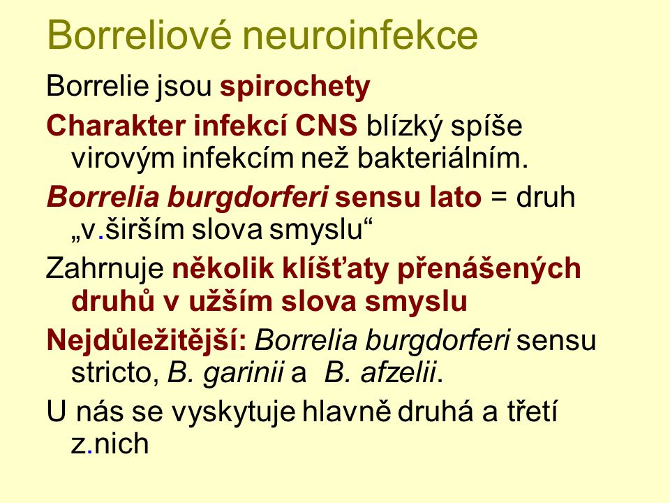 Borreliové neuroinfekce