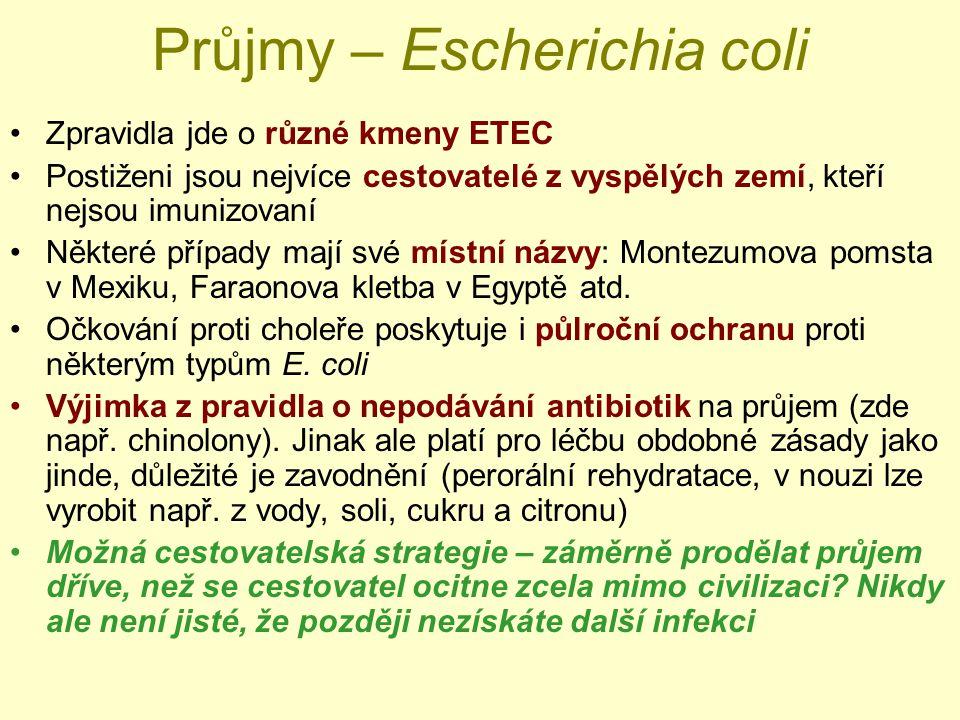 Průjmy – Escherichia coli
