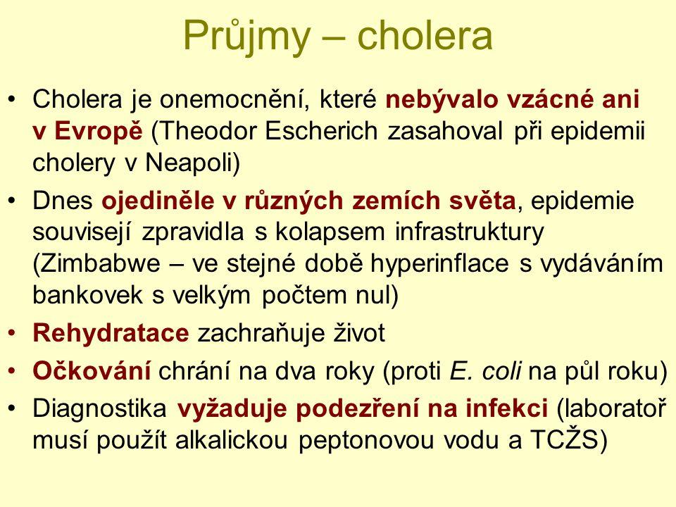 Průjmy – cholera Cholera je onemocnění, které nebývalo vzácné ani v Evropě (Theodor Escherich zasahoval při epidemii cholery v Neapoli)