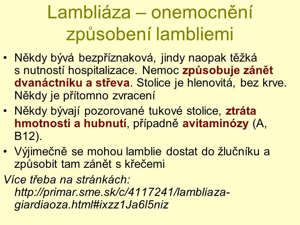 Lambliáza – onemocnění způsobení lambliemi