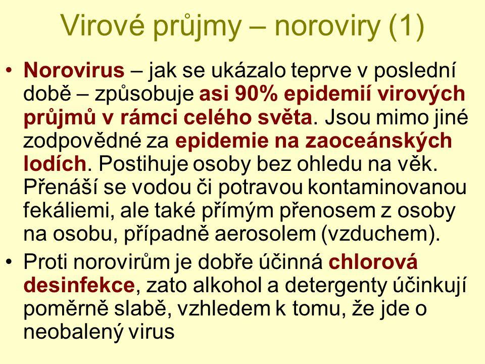 Virové průjmy – noroviry (1)