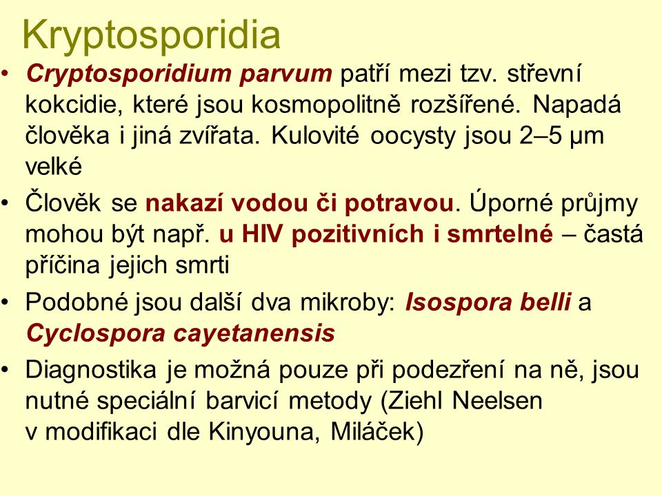 Kryptosporidia