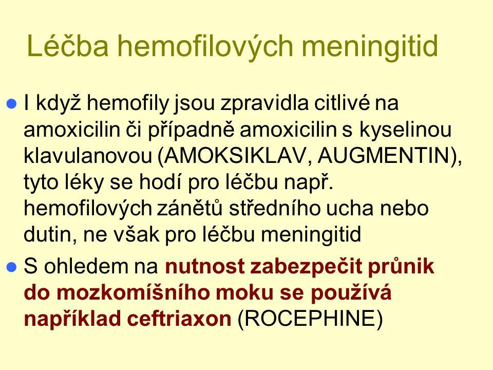 Léčba hemofilových meningitid