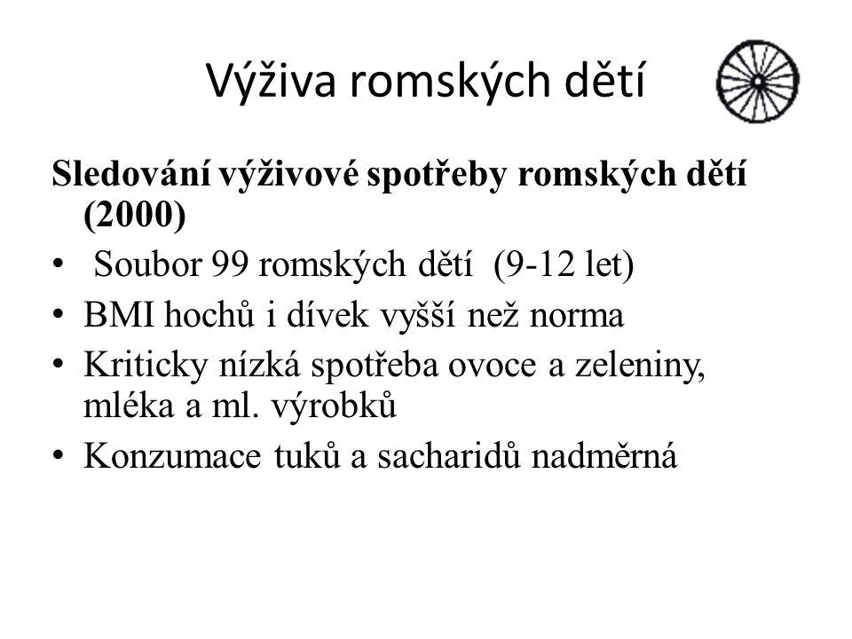 Výživa romských dětí Sledování výživové spotřeby romských dětí (2000)