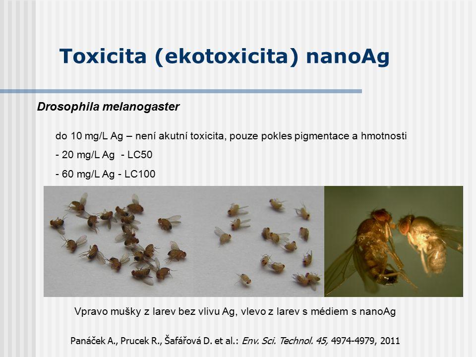 Toxicita (ekotoxicita) nanoAg