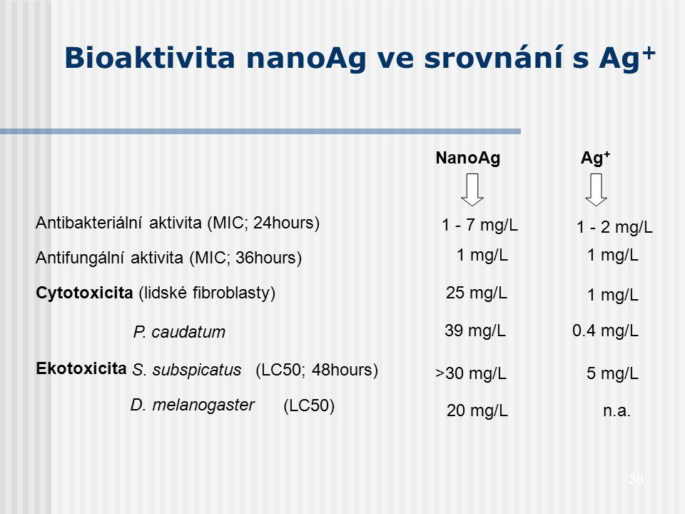 Bioaktivita nanoAg ve srovnání s Ag+