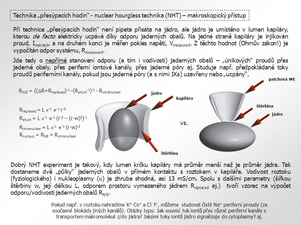 """Technika """"přesýpacích hodin - nuclear hourglass technika (NHT) – makroskopický přístup"""