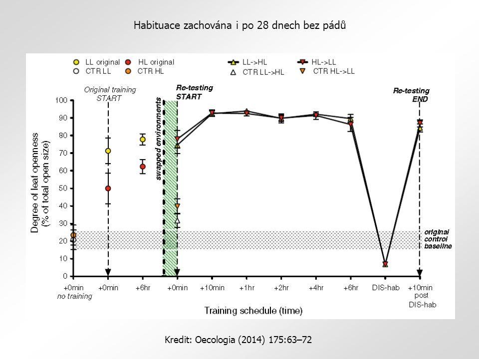 Habituace zachována i po 28 dnech bez pádů