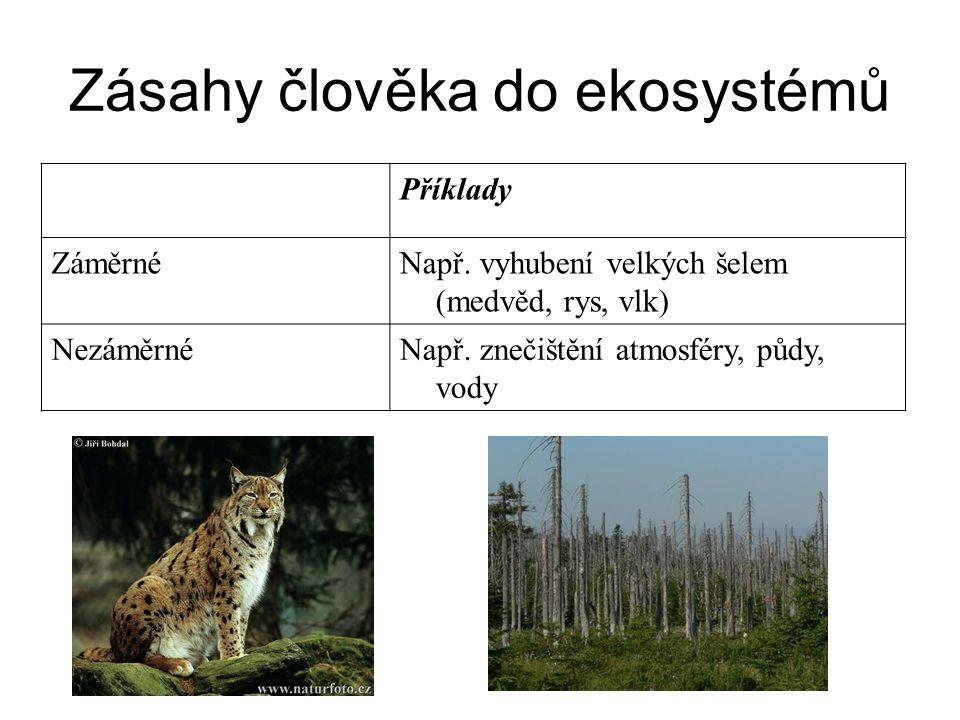 Zásahy člověka do ekosystémů