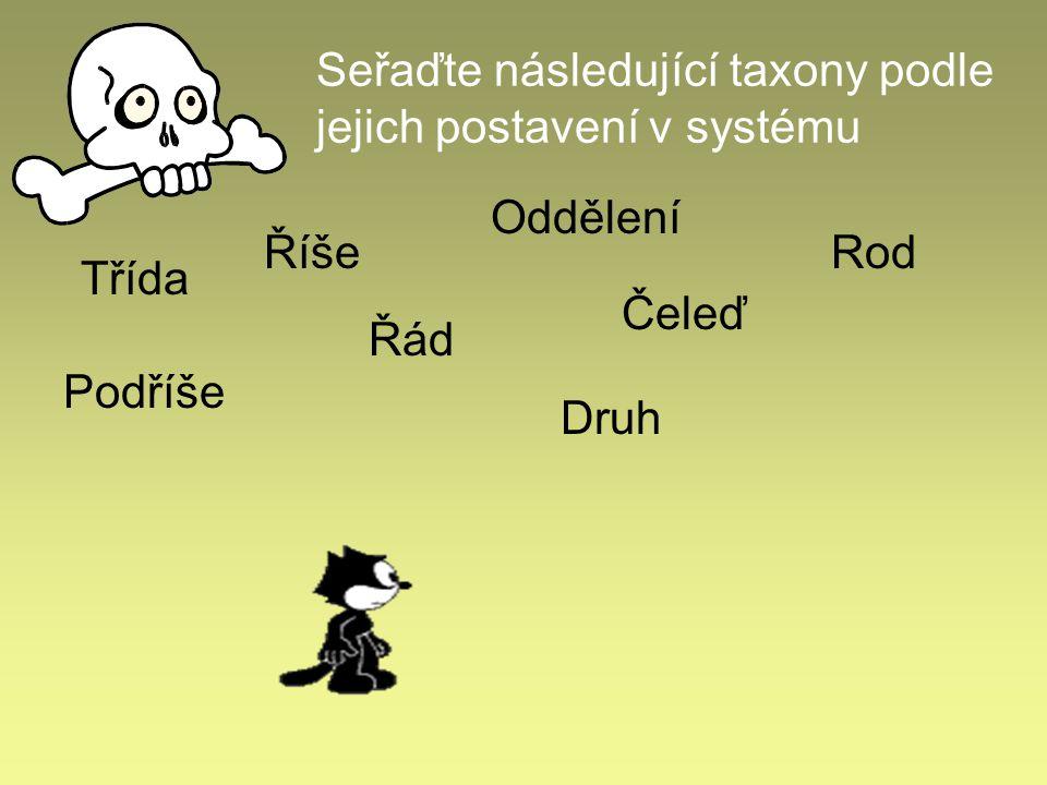 Seřaďte následující taxony podle jejich postavení v systému