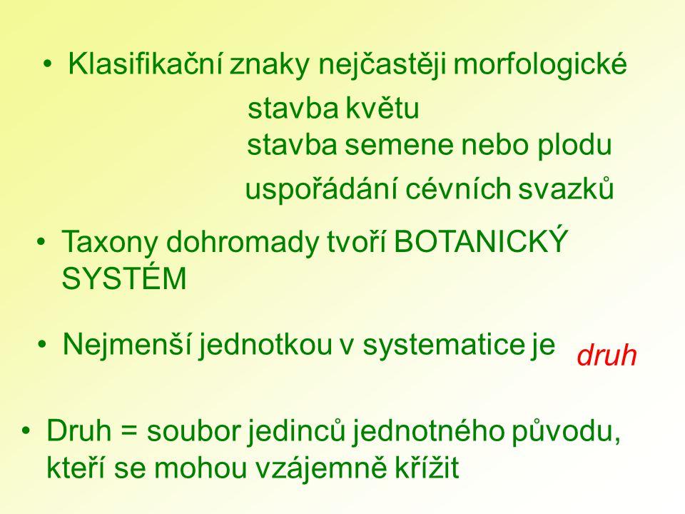 Klasifikační znaky nejčastěji morfologické