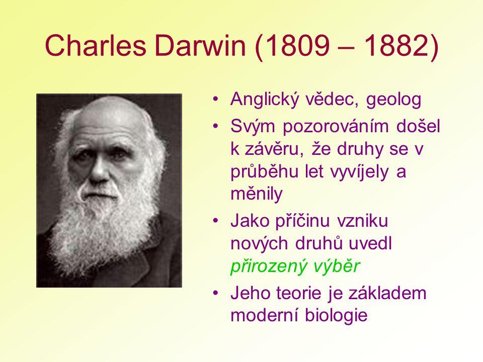 Charles Darwin (1809 – 1882) Anglický vědec, geolog