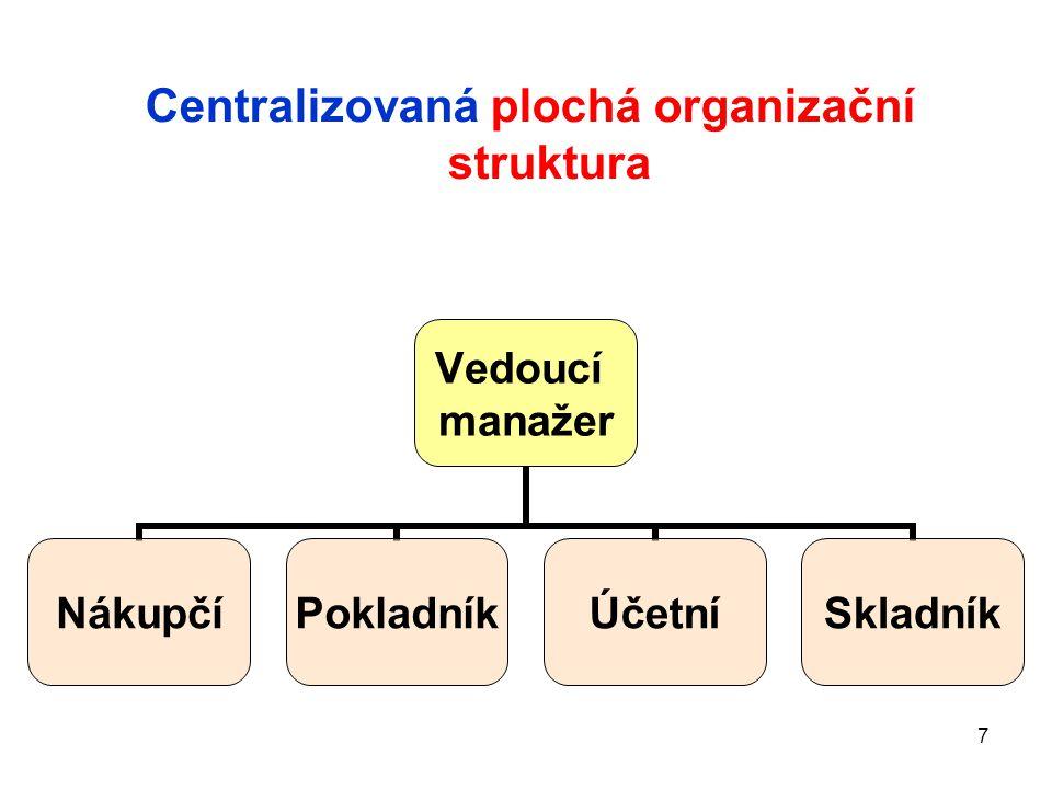 Centralizovaná plochá organizační struktura