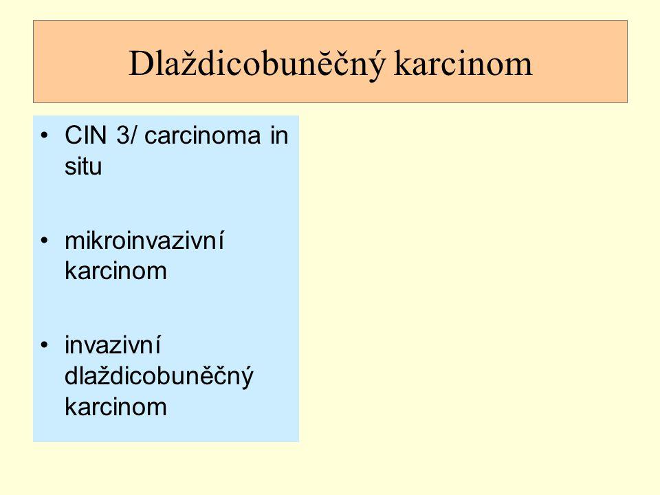 Dlaždicobunĕčný karcinom