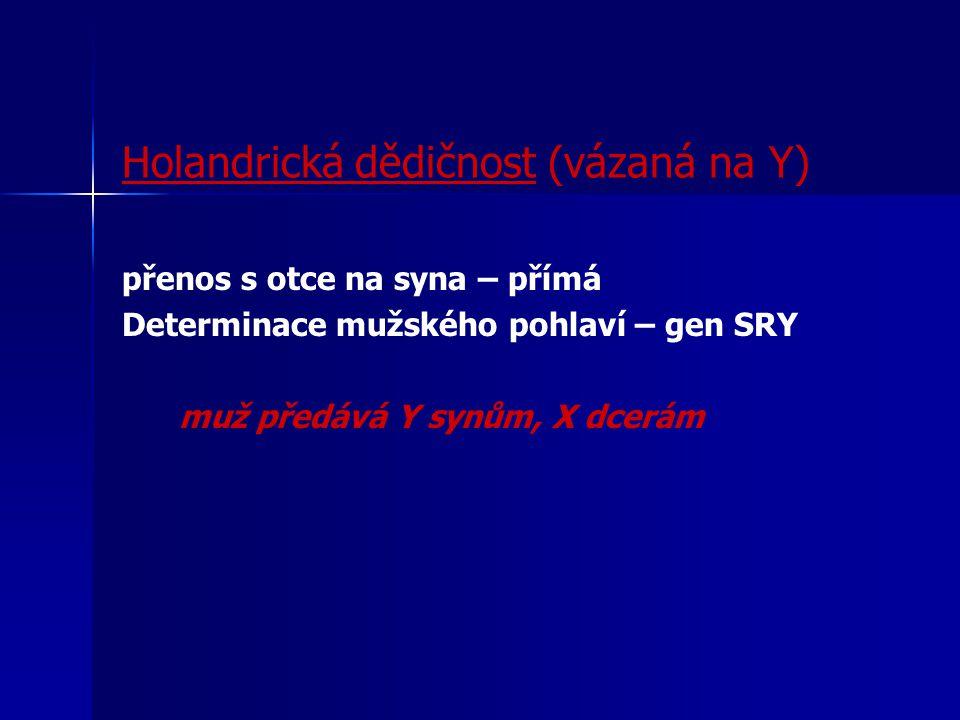 Holandrická dědičnost (vázaná na Y)