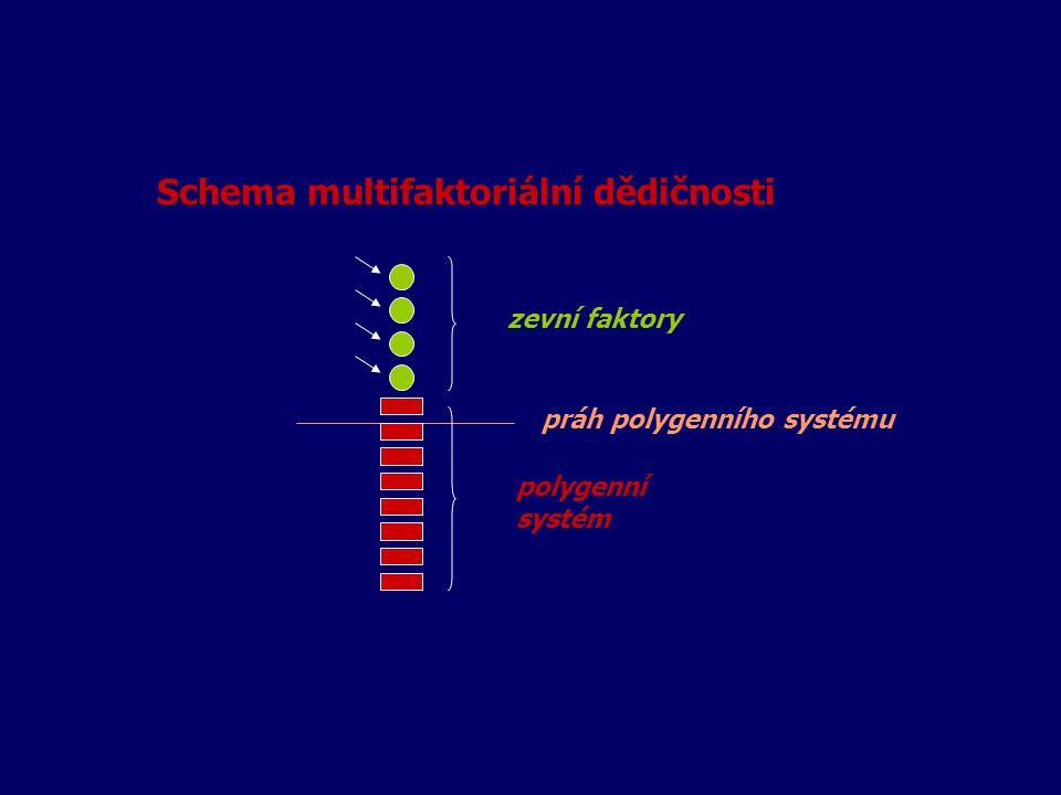 Schema multifaktoriální dědičnosti