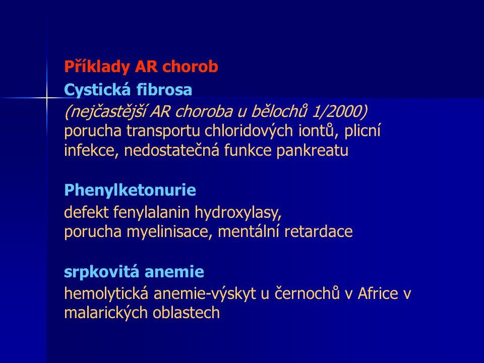 Příklady AR chorob Cystická fibrosa. (nejčastější AR choroba u bělochů 1/2000)