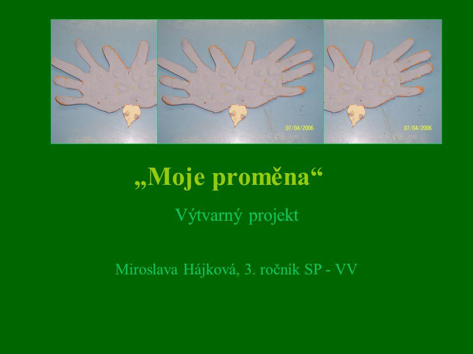 Výtvarný projekt Miroslava Hájková, 3. ročník SP - VV
