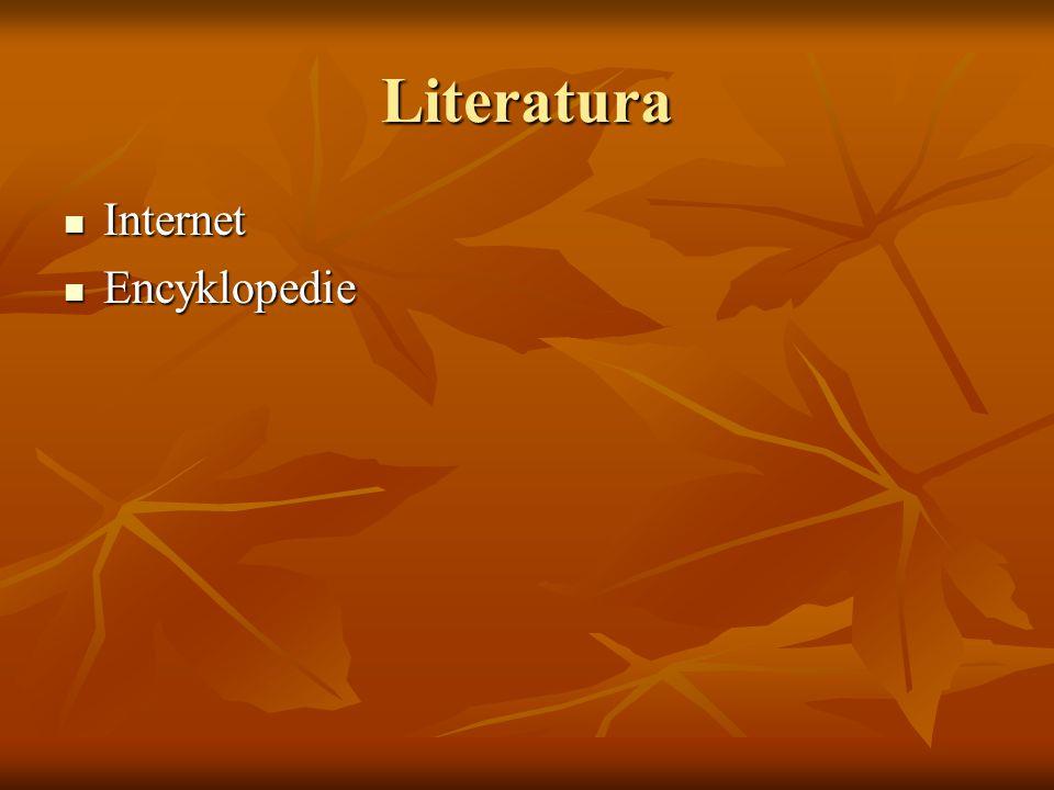 Literatura Internet Encyklopedie