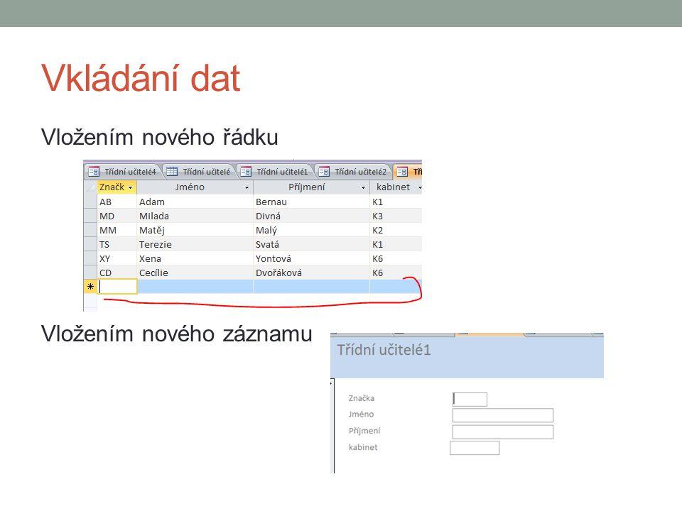 Vkládání dat Vložením nového řádku Vložením nového záznamu