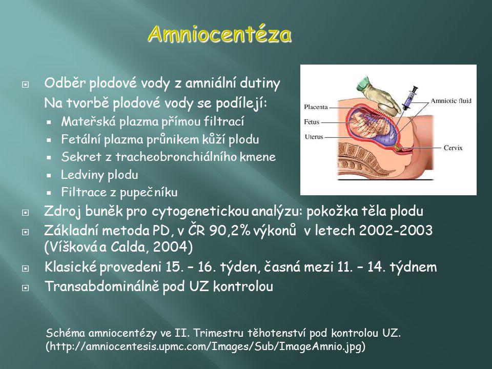 Amniocentéza Odběr plodové vody z amniální dutiny