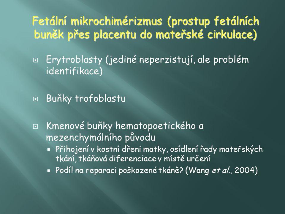 Fetální mikrochimérizmus (prostup fetálních buněk přes placentu do mateřské cirkulace)