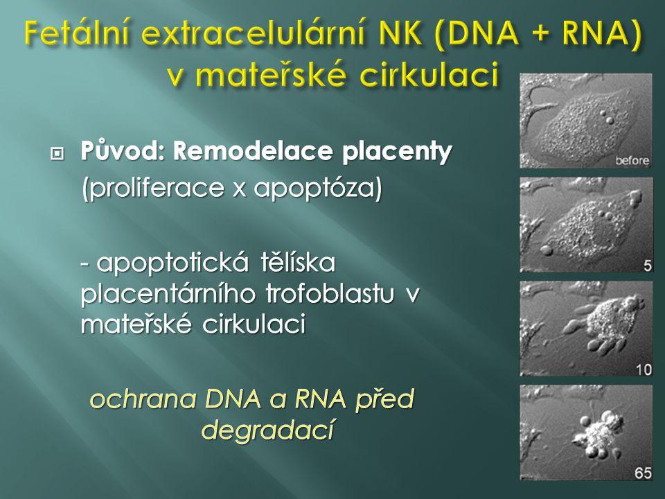Fetální extracelulární NK (DNA + RNA) v mateřské cirkulaci
