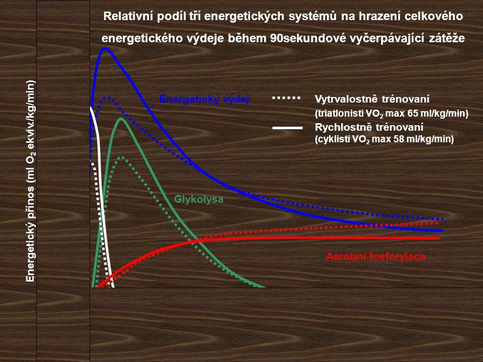 Relativní podíl tří energetických systémů na hrazení celkového