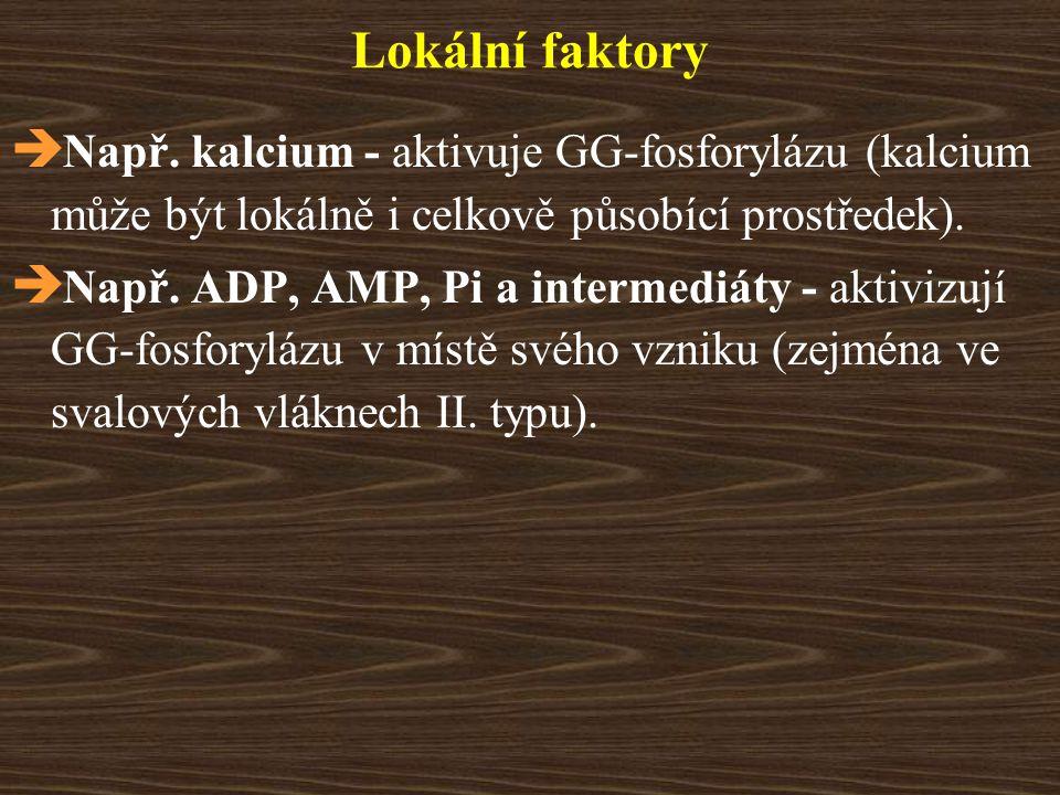Lokální faktory Např. kalcium - aktivuje GG-fosforylázu (kalcium může být lokálně i celkově působící prostředek).