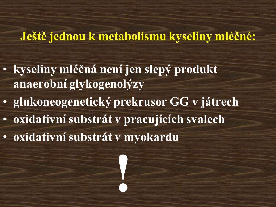 Ještě jednou k metabolismu kyseliny mléčné: