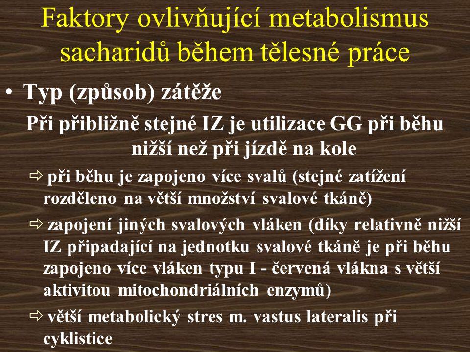 Faktory ovlivňující metabolismus sacharidů během tělesné práce