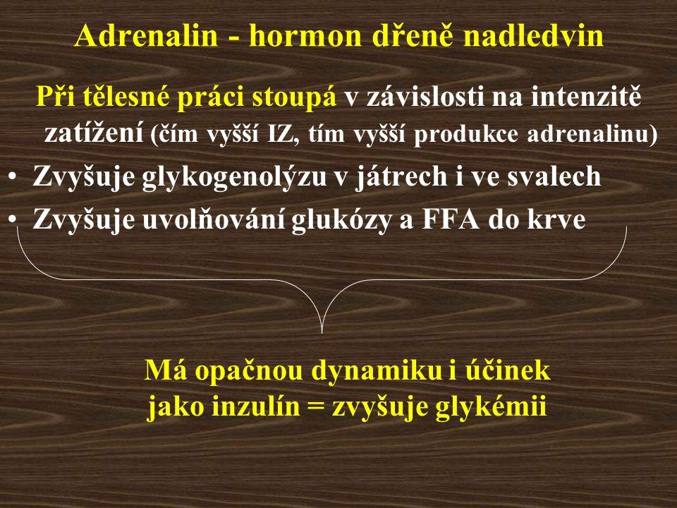 Adrenalin - hormon dřeně nadledvin