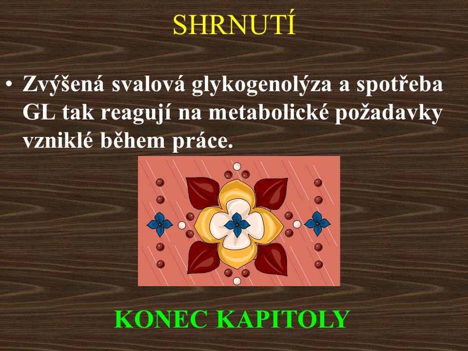 SHRNUTÍ KONEC KAPITOLY
