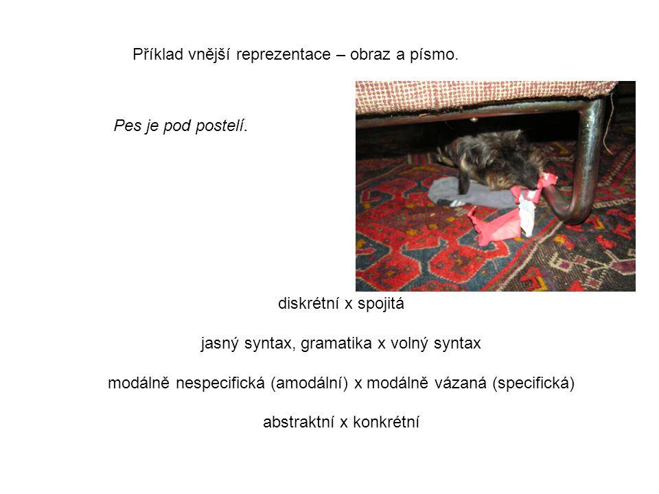 Příklad vnější reprezentace – obraz a písmo.