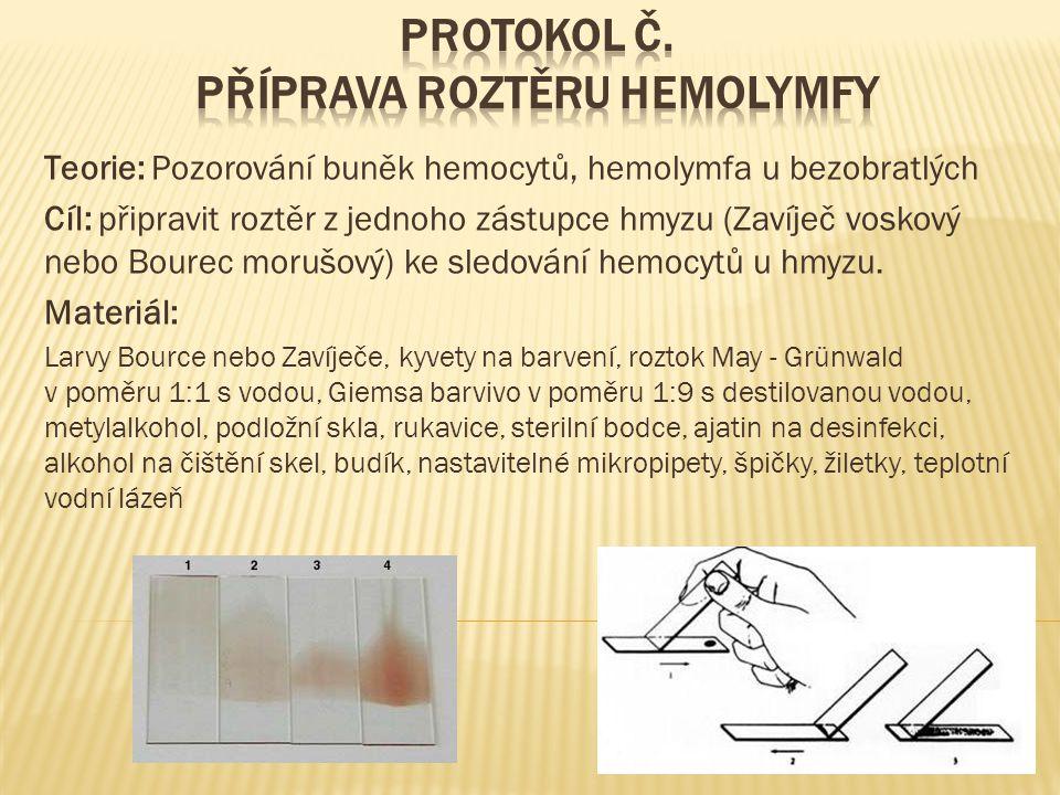 Protokol č. Příprava roztěru hemolymfy